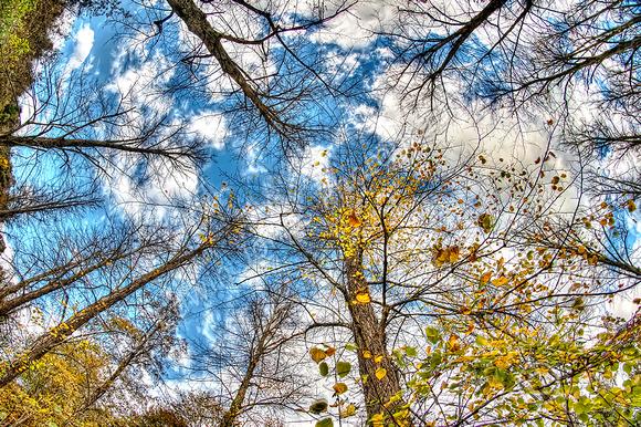 Arundel Autumn Sky Final