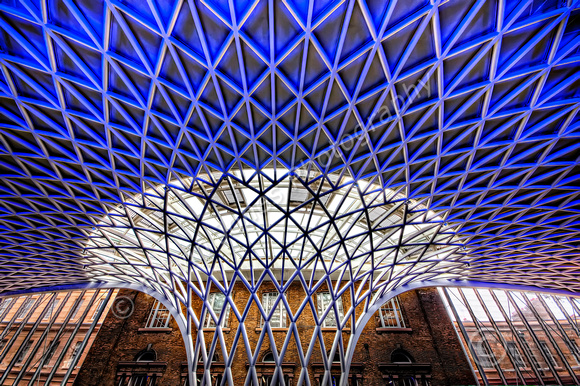 Kings Cross Station Flowering Roof
