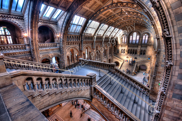 Natural History Museum Staircase to Hogwarts Tonemapped