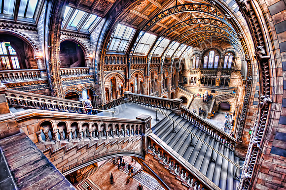 Natural History Museum Staircase to Hogwarts Final