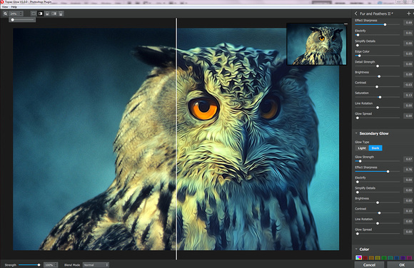 Owl Screenshot copy